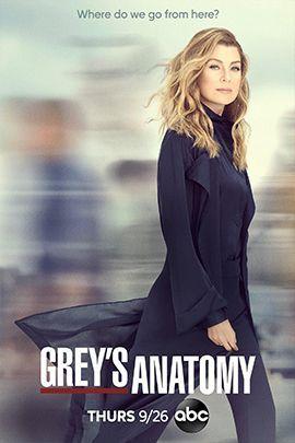 实习医生格蕾 第十六季的海报