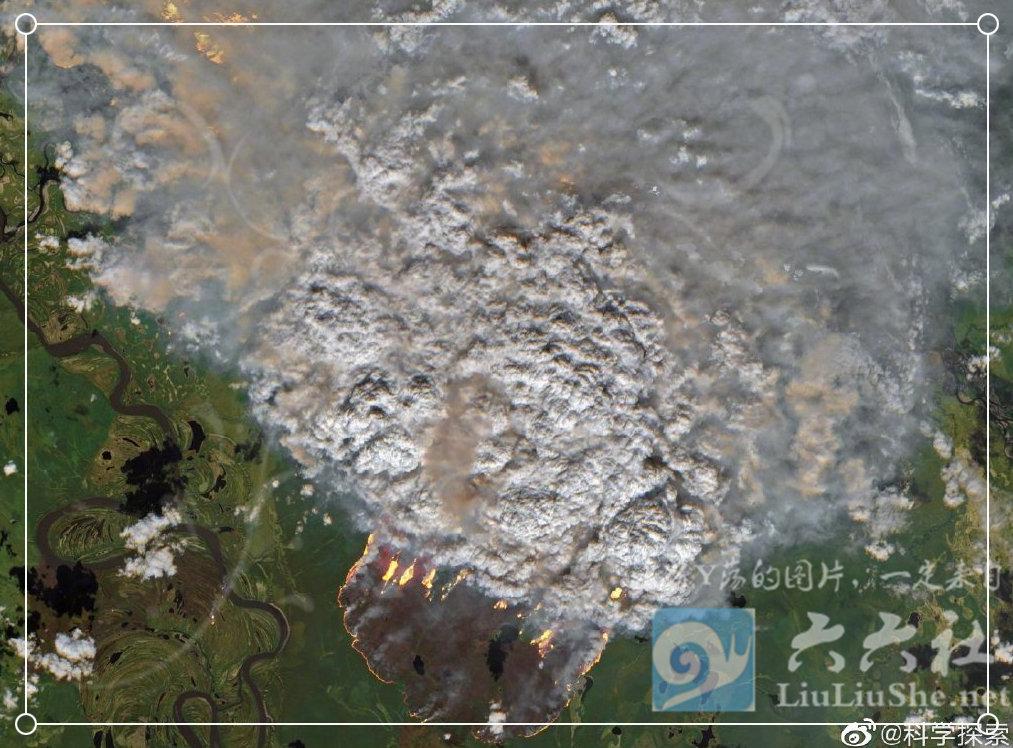 为什么任由大火烧了亚马逊雨林23天,却没人救火和报道? liuliushe.net六六社 第1张