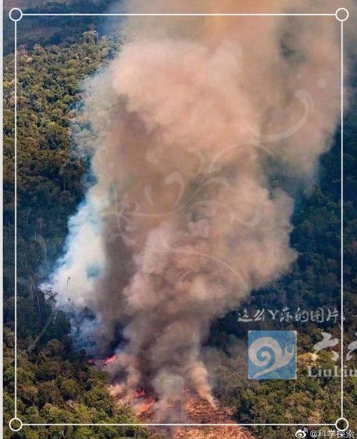 为什么任由大火烧了亚马逊雨林23天,却没人救火和报道? liuliushe.net六六社 第7张