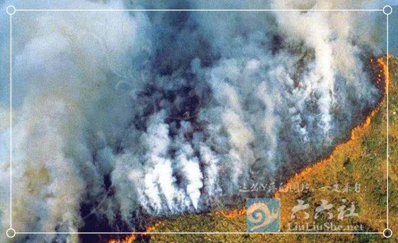 为什么任由大火烧了亚马逊雨林23天,却没人救火和报道? liuliushe.net六六社 第10张
