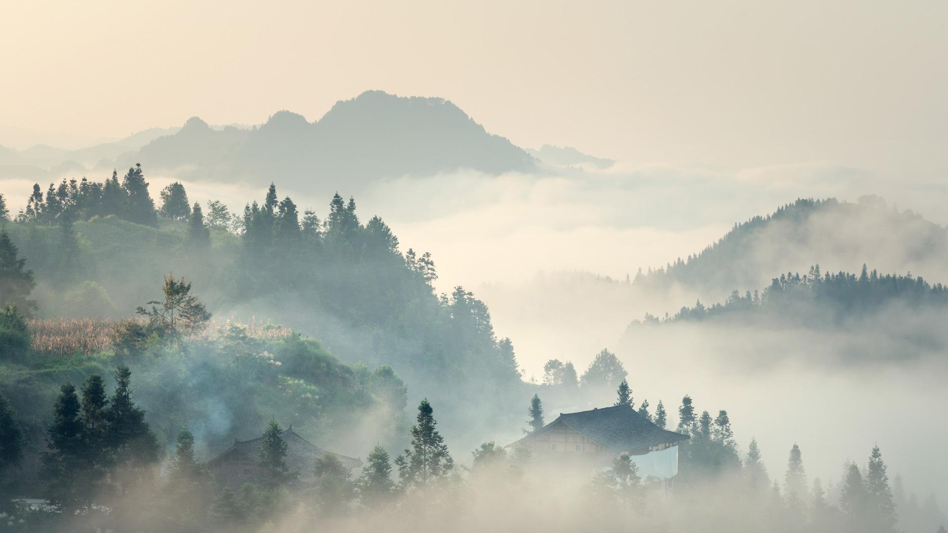 今日清明,清晨浓雾清明