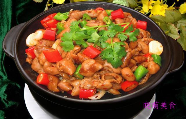 花甲粉丝煲、明虾鸡爪煲、番茄牛腩煲、香辣肥肠煲的家常做法