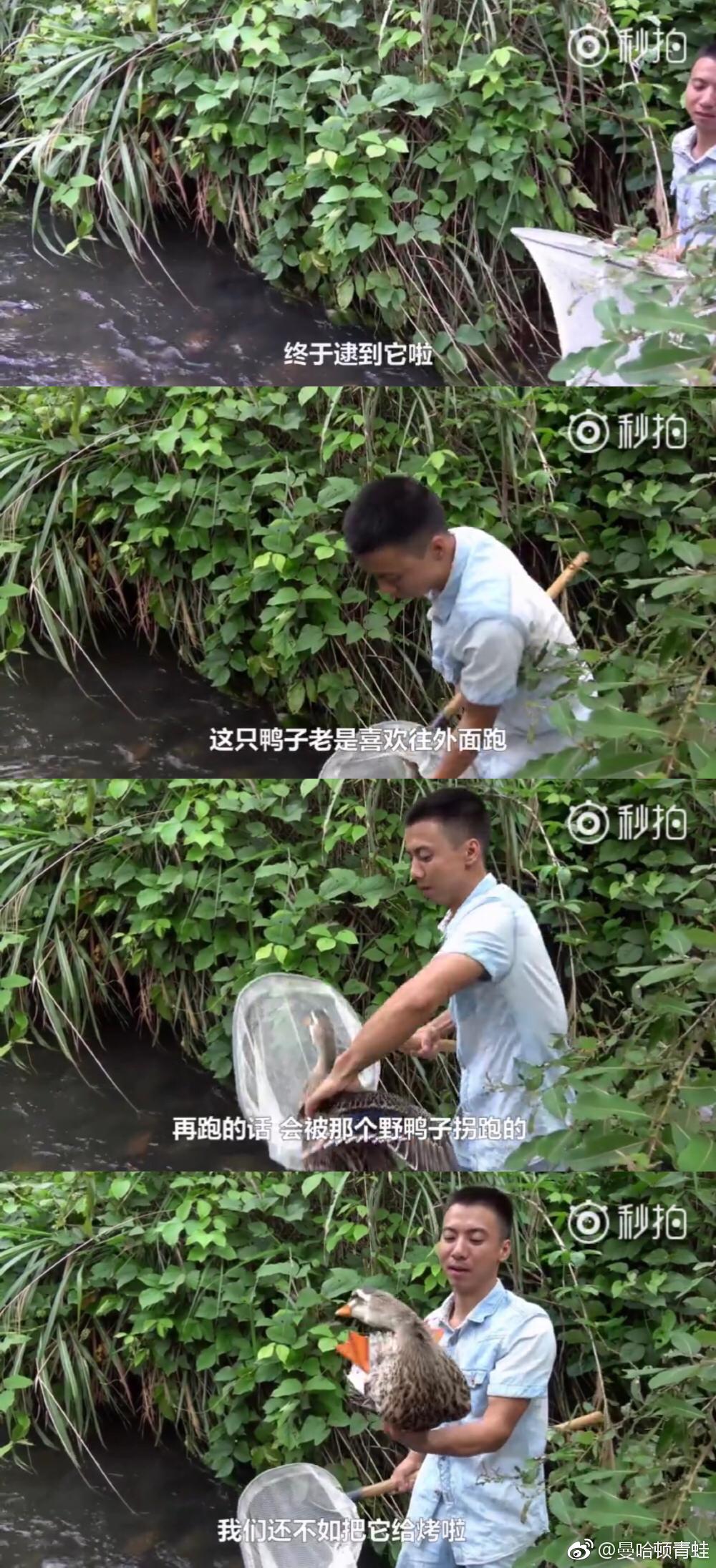 农村美食UP主:华农兄弟,最爱吃竹鼠