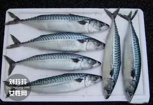 红烧青花鱼的做法 家常青花鱼的做法1