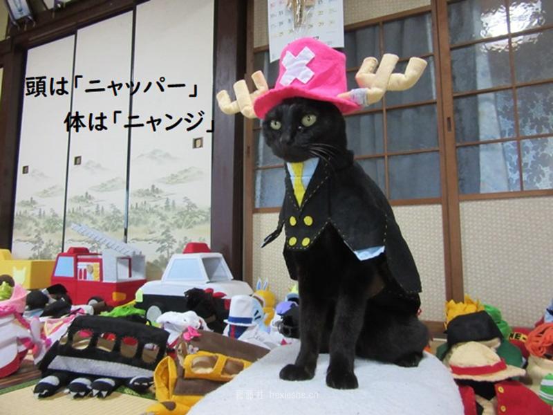 日本黑猫动画角色COS_和邪社27