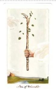 塔罗占卜桃花:你的爱情运势拥有哪些关键词