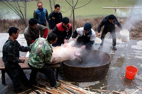 塔罗日记:吃泡汤肉成了家常便饭,也就不足为奇了