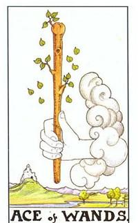 【小阿尔卡纳】元素指导下的数字历程——火元素小牌(上)