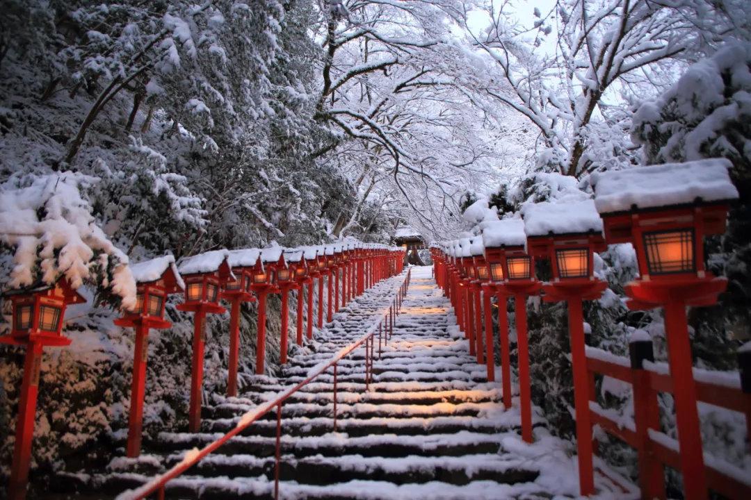 盘点日本旅行一年四季最佳时间避免堵在路上遇到囧途 (13)