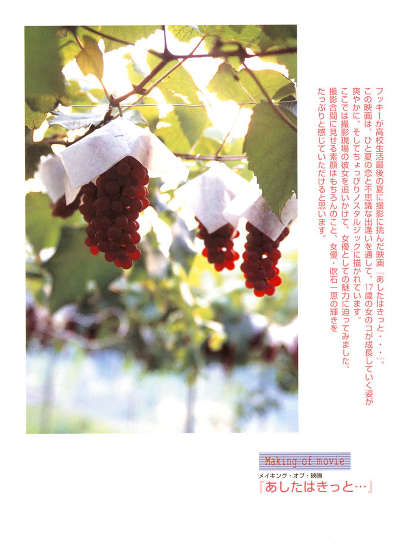 被锁在保险柜里的日本艺人吹石一惠的写真作品 (31)