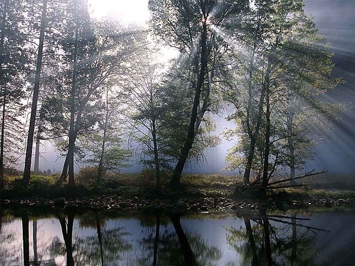 湖泊小溪桌布