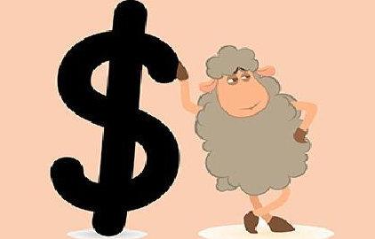 薅羊毛月入5000难不难?怎样薅羊毛才能赚到钱? 薅羊毛 第1张