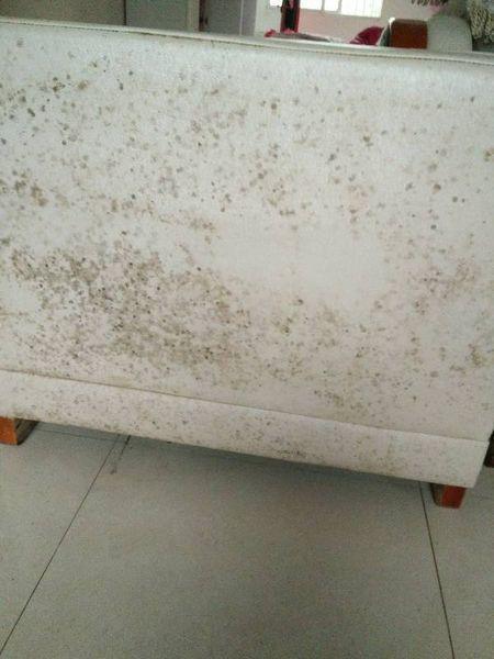 沙发发霉霉变的几种修复处理方法-家具美容网