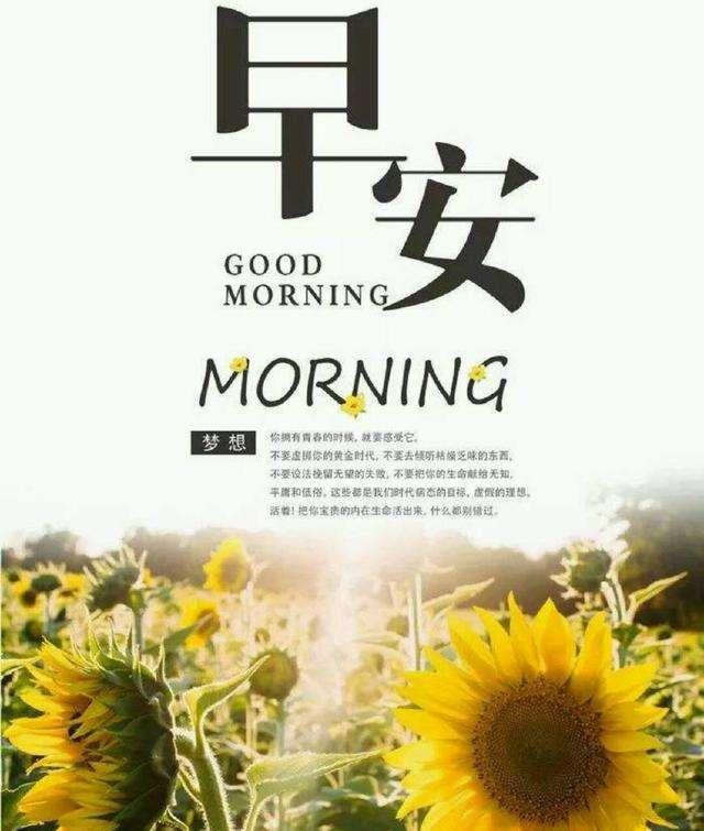 80句早上吸引朋友圈的句子_早安一发就会被秒赞的句子80条