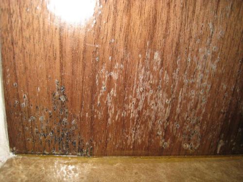 家具发霉起泡的缘由及维修保养方法-家具美容网
