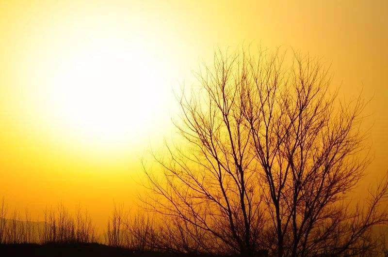 冬日暖阳的唯美句子