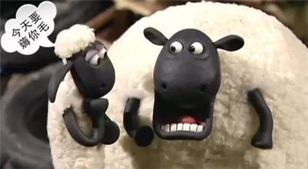 薅羊毛是什么意思?