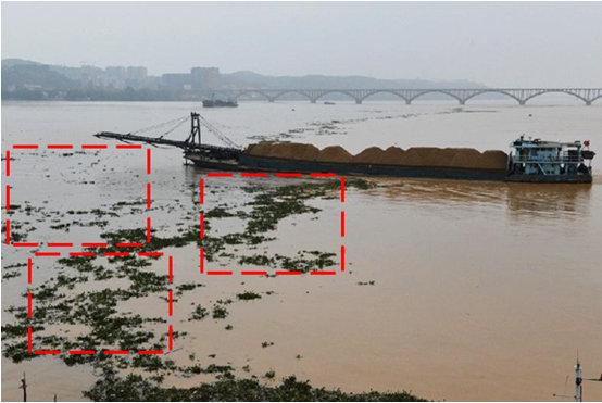火眼智能河道漂浮物监测预警系统