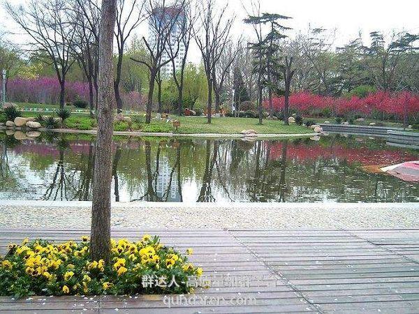 图片[3]-潍坊市火箭群等交流群(9.14更新)-群达人
