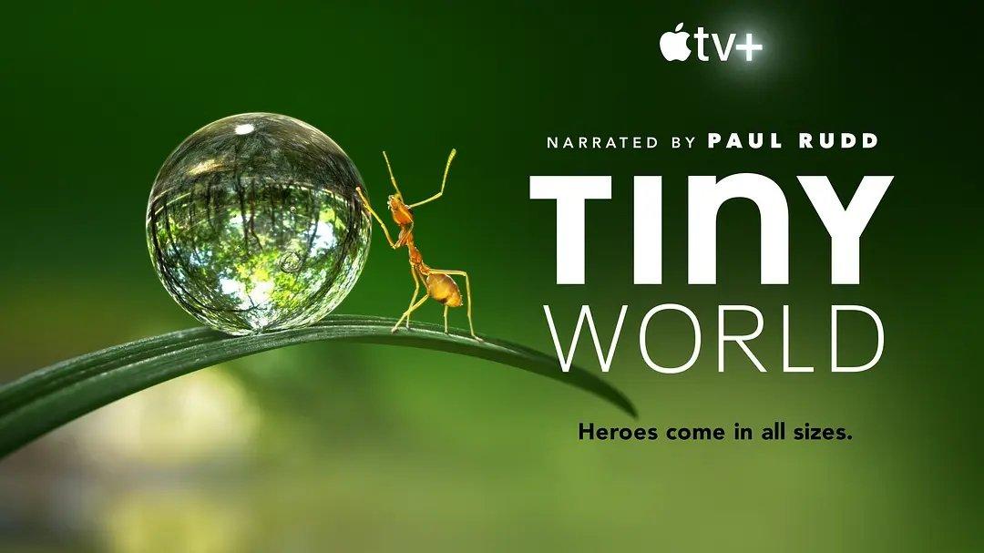 Apple TV+出品自然纪录片《小小世界》两季全插图1