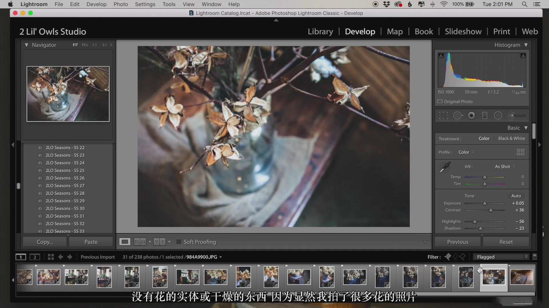 摄影教程_Lenslab –静物花卉产品摄影掌握色彩突破艺术界限研讨会-中文字幕 摄影教程 _预览图35