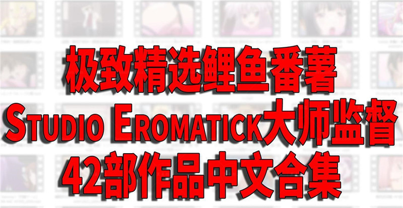 Studio Eromatick 全42部作品中文步兵合集【精品合集/7G】