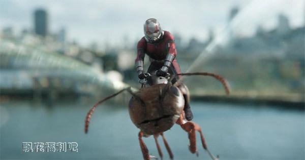 蚁人2黄蜂女现身