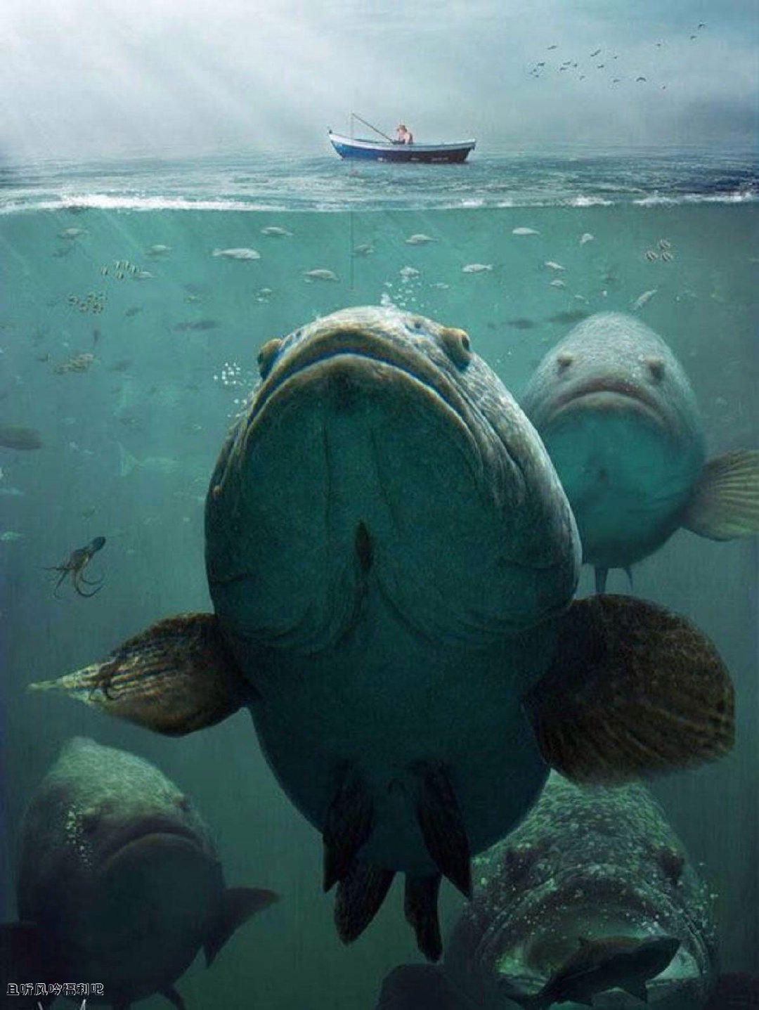 深海恐惧症图片12