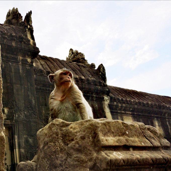 柬埔寨吴哥窟