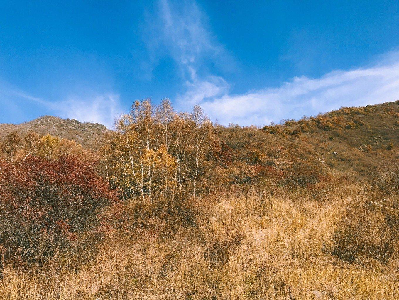 北方的十月蓝天白云,微风习习