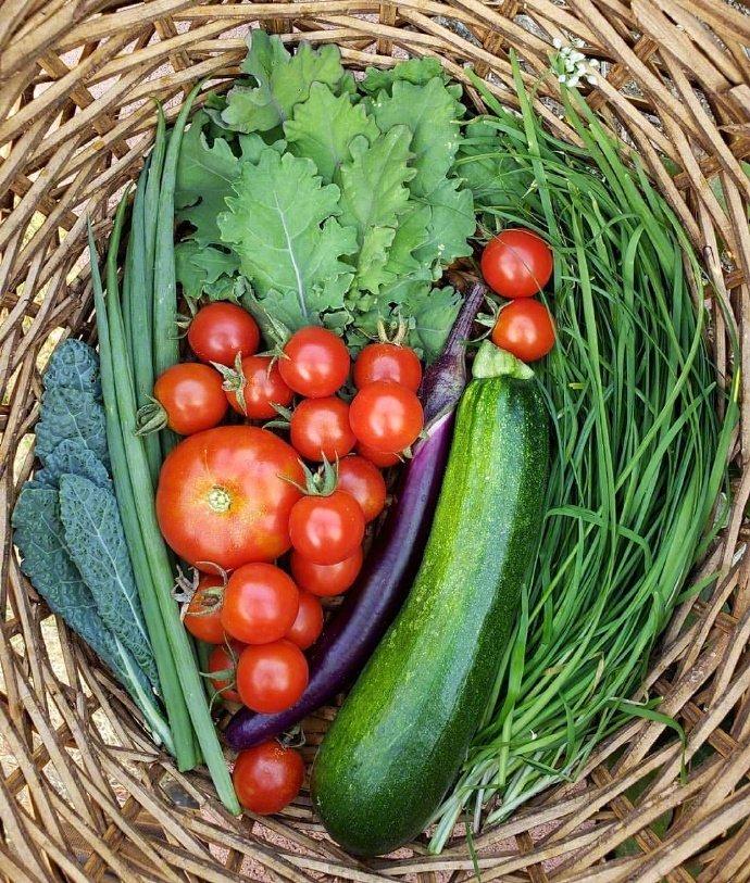 篮子里的果蔬图片