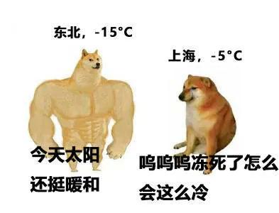 东北,-15°C 今天太阳还挺暖和  上海,-5°C 呜呜呜冻死了怎么 会这么冷