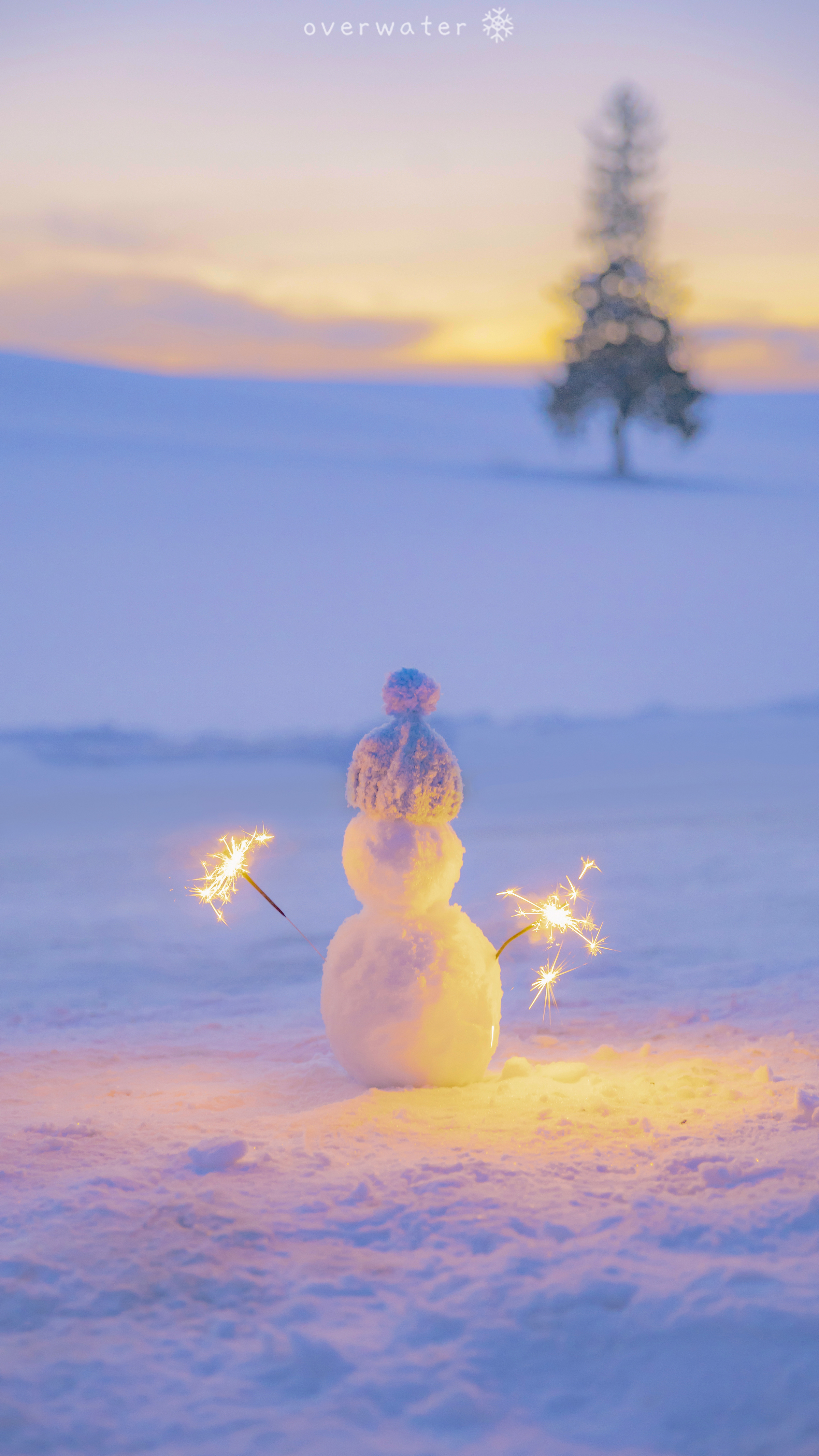 雪 花 火