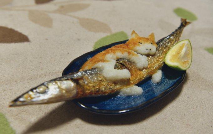 用萝卜泥做的抱着秋刀鱼的猫咪和叼着汉堡肉的柴犬 涨姿势 第1张
