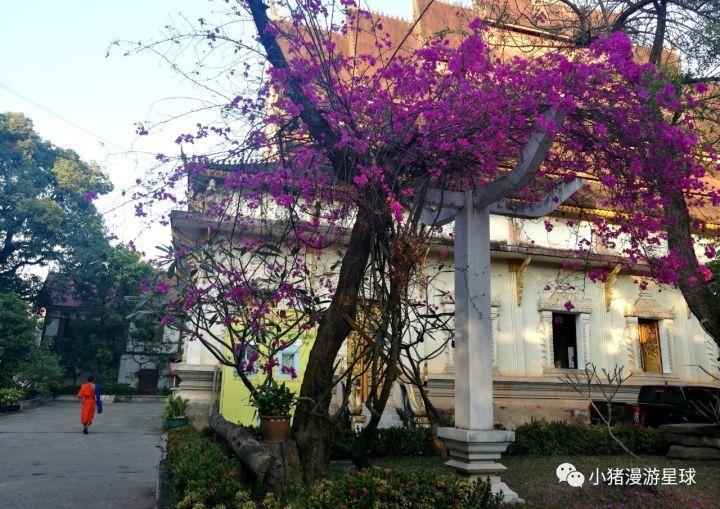 老挝是个什么样的国家? liuliushe.net六六社 第1张