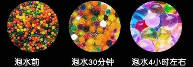 """你小时候玩过""""水精灵""""吗?这种""""吸水球""""正在火遍全球 liuliushe.net六六社 第1张"""