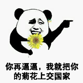 你再逼逼,我就把你的菊花上交国家