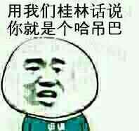 用我们桂林话说,你就是个哈吊巴!