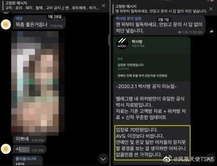 韩国N号房记者实录完整翻译