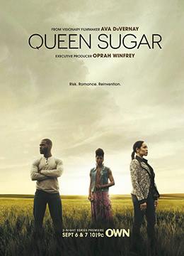 蔗糖女王 第一季