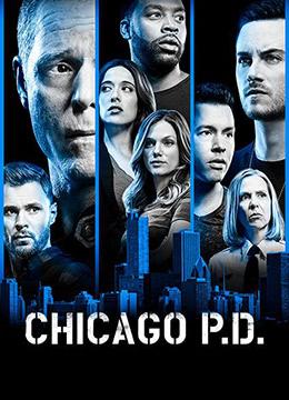 芝加哥警署 第六季