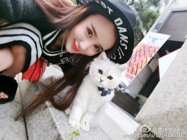孟晓艺dana今天偶遇到一只可爱的猫咪,还有着小红脸蛋,_美女福利图片(图5)
