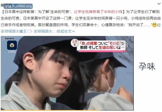 日本学生竟然吃掉自己养的小鸡:残忍?
