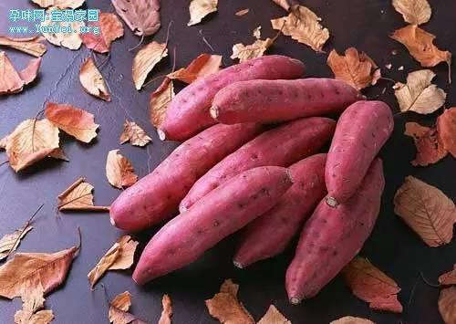 秋季给孩子吃这三样,可比吃肉强多了!