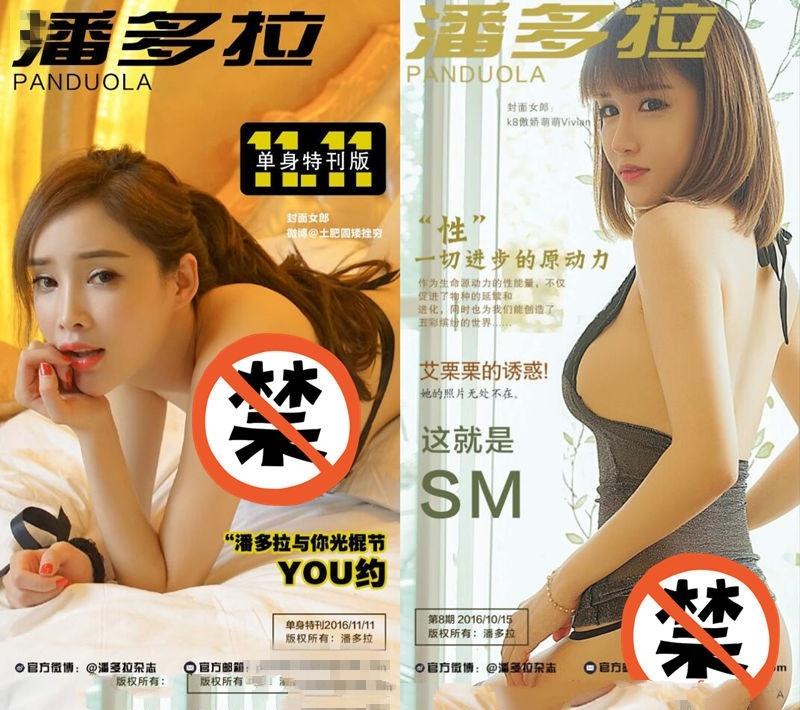 [潘多拉]一本专门解密私房的摄影杂志08期+11.11特刊劲爆版[2PDF/30MB]