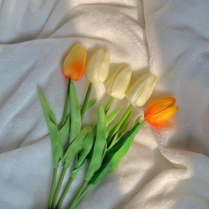 温柔简短的文案短句,温柔的人,在夜晚也会漏出伤疤
