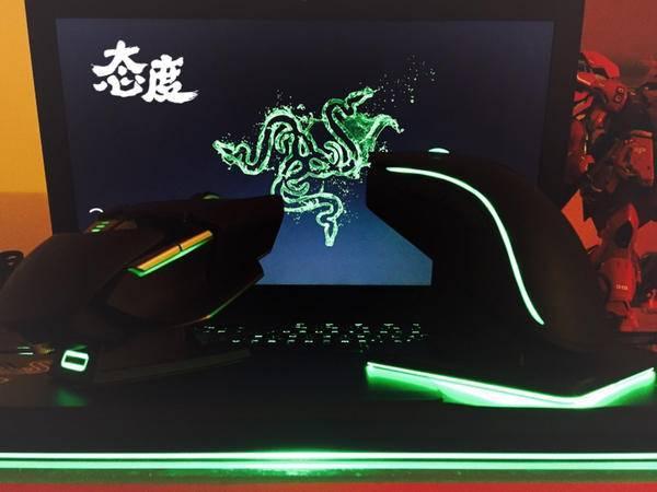 雷蛇退烧粉有话说:曼巴眼镜蛇精英版鼠标体验
