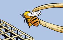色系军团|蚂蚁与蜂蜜漫画(连载漫画全46集)