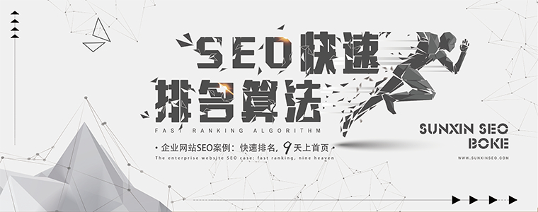 SEO快速排名算法 网站优化