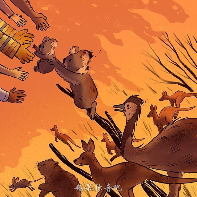 艺术家12张图片展示澳洲大火,感受到动物们的无声哭泣!-爱趣猫